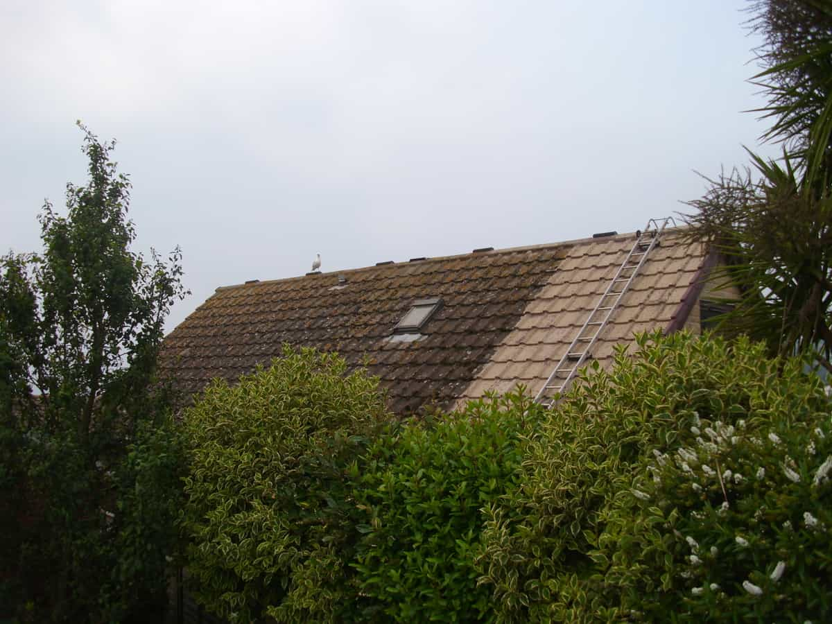 Roof Cleaning Ridge Roofing